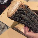 薪は通販で買うべき?|「薪癒し亭」の「信州ナラ・クヌギの薪」 が凄い!
