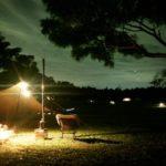 小型の「薪ストーブ」でソロキャンプを楽しむ。